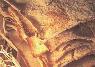 Pan Carasau típico de la Sardegna