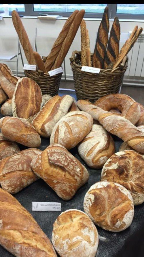 Una muestra de panes artesanos