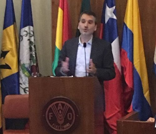 Sr. Carlos Nin (Director i+D+i Grupo Bimbo - España)
